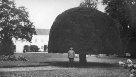 Ellinge Slottsträdgård, Skåne, 1927. Foto: Mårten Sjöbeck.